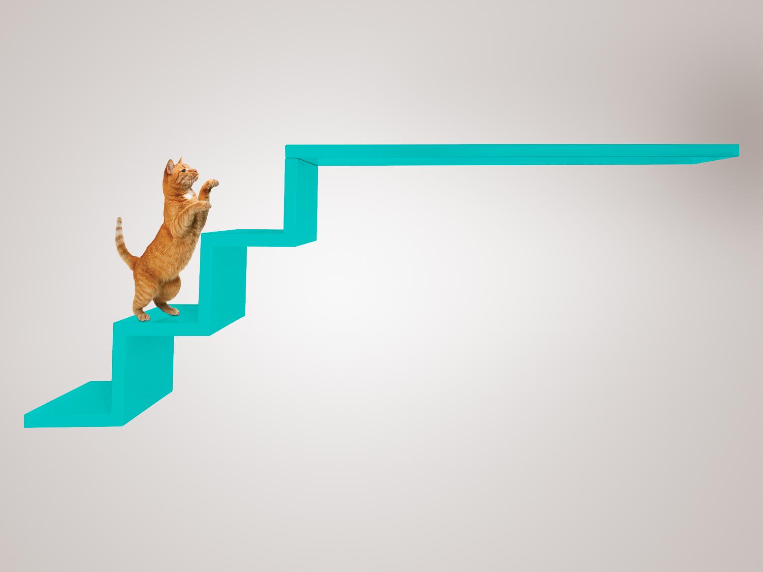 Escada Ana Flor Verde