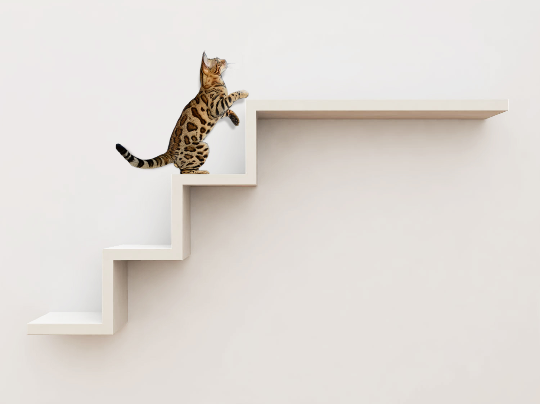 Escada Ana Flor Branco