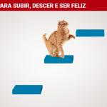 PRATELEIRAS TATI_azul