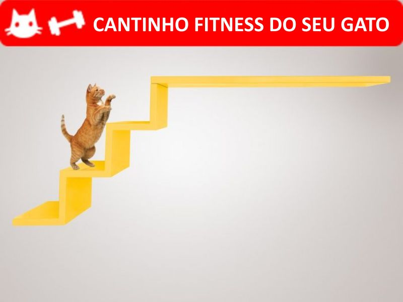 escada-ana-flor-amarela